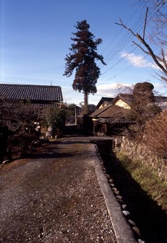 FWogawamachiRG011(1).jpg