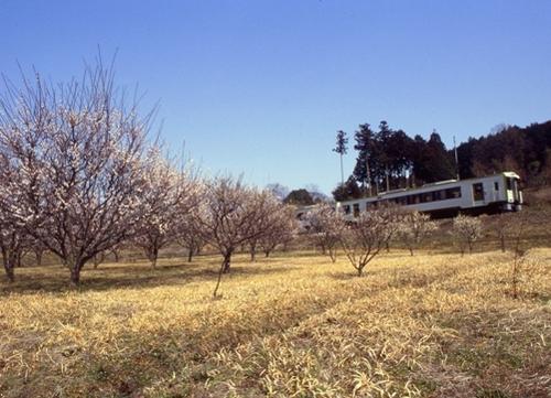 FWogawamachiRG048(1).jpg