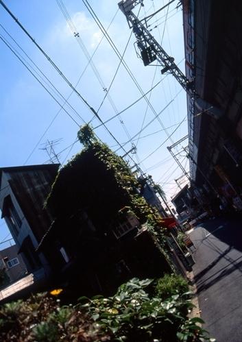 FWosakaRG010(1).jpg