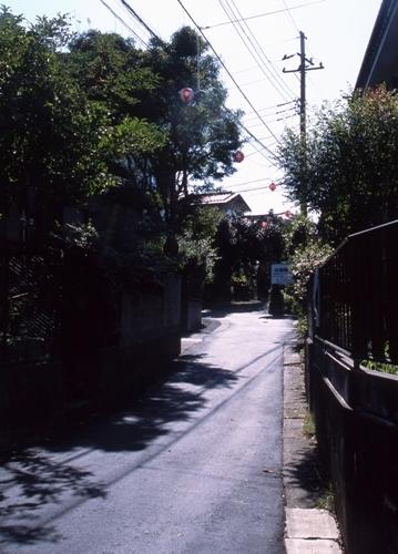 FWsakuraRG017(1).jpg