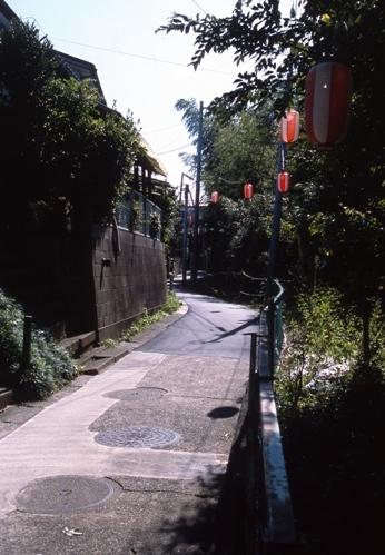 FWsakuraRG018(1).jpg
