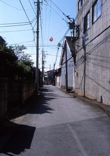 FWsakuraRG032(1).jpg