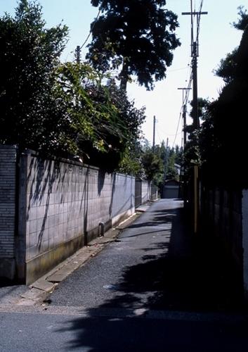 FWsakuraRG042(1).jpg