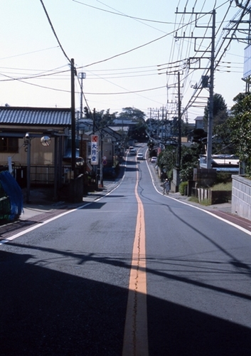 FWsakuraRG044(1).jpg