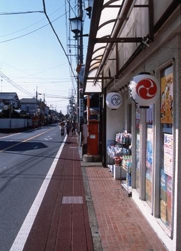 FWsakuraRG048(1).jpg