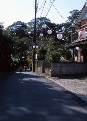 FWsakuraRG056(1).jpg