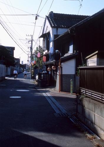 FWsakuraRG061(1).jpg