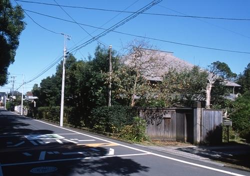 FWsakuraRG076(1).jpg