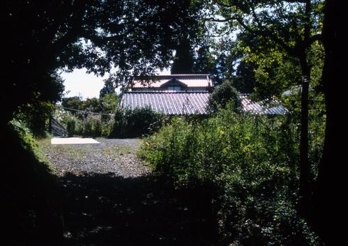 FWsakuraRG080(1).jpg