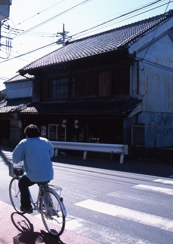FWsakuraRG105(1).jpg