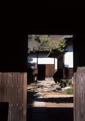 FWsakuraRG113(1).jpg
