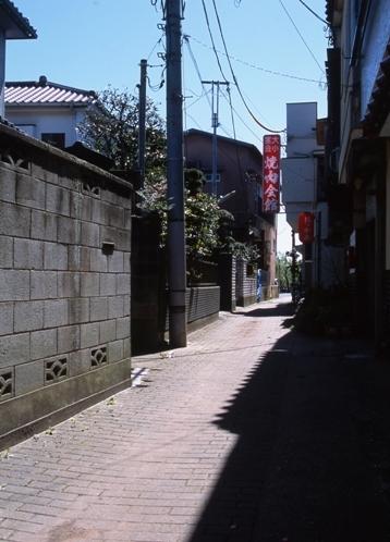 FWsawaraRG051(1).jpg
