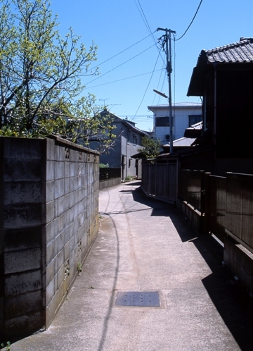 FWsawaraRG063(1).jpg