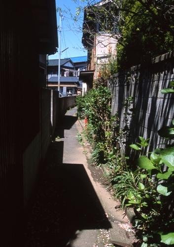FWsawaraRG066(1).jpg
