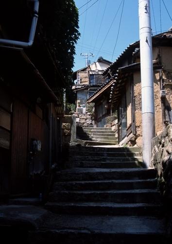 FWshimotsuiRG019(1).jpg