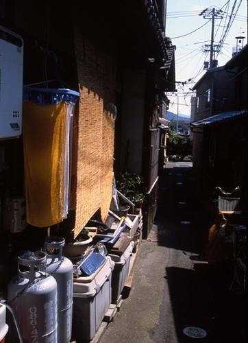 FWshimotsuiRG041(1).jpg