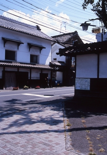 FWsuzakaRG031(1).jpg