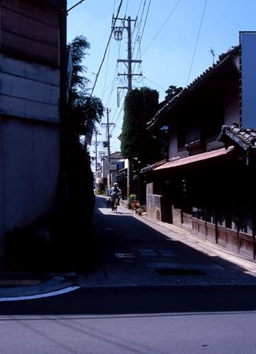FWsuzakaRG033(1).jpg