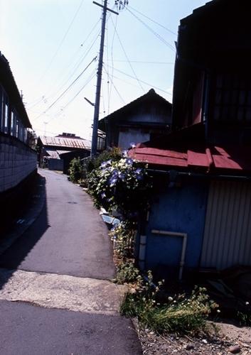 FWsuzakaRG038(1).jpg