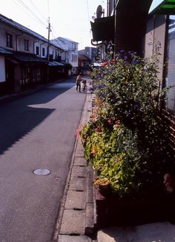 FWsuzakaRG056(1).jpg