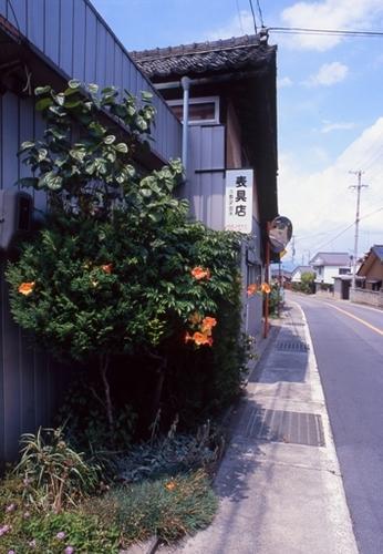 FWsuzakaRG072(1).jpg