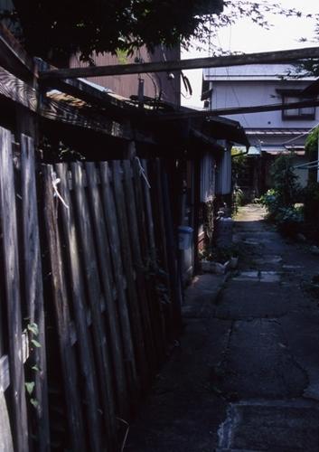 FWsuzakaRG084(1).jpg