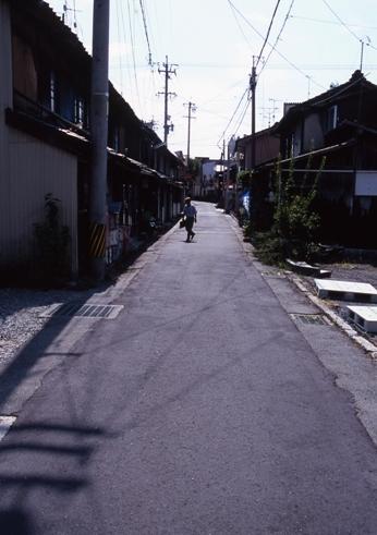 FWsuzakaRG142(1).jpg