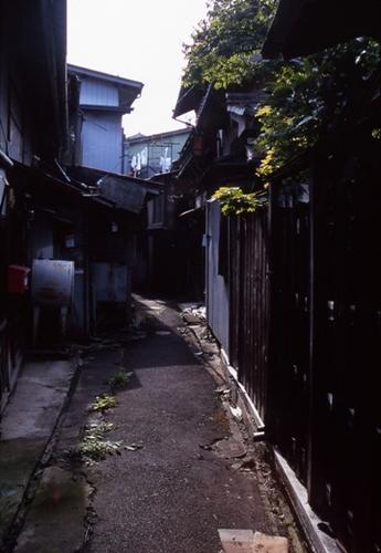 FWsuzakaRG153(1).jpg