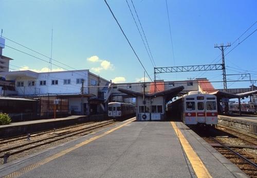 FWsuzakaRG189(1).jpg