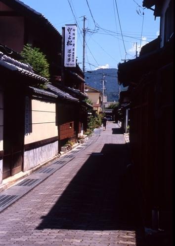 FWsuzakaRG197(1).jpg