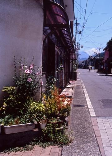 FWsuzakaRG205(1).jpg