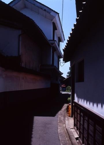 FWsuzakaRG206(1).jpg