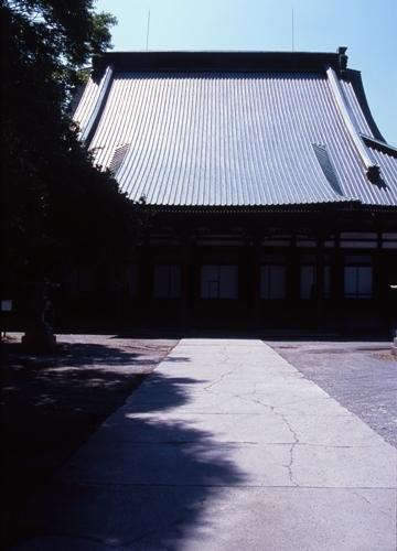FWsuzakaRG213(1).jpg