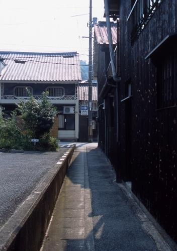 FWtamashimaRG030(1).jpg
