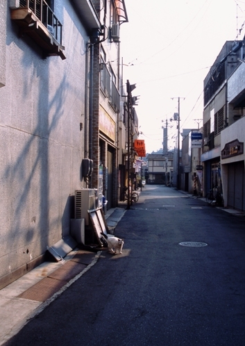 FWtamashimaRG059(1).jpg