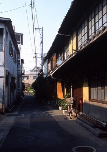FWtamashimaRG076(2).jpg