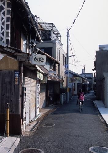 FWtamashimaRG084(1).jpg
