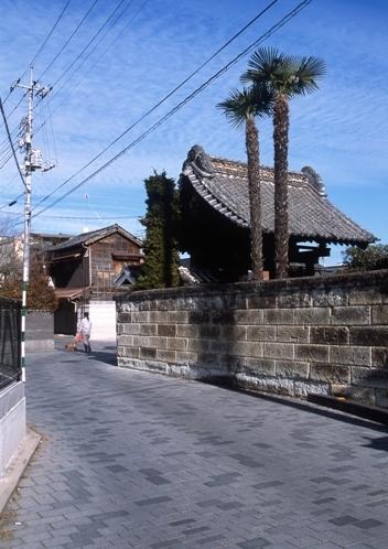 FWtochigiRG241(1).jpg