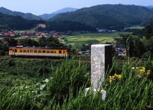 FWtsuwanoRG001(1).jpg