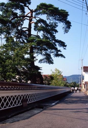 FWtsuwanoRG009(1).jpg