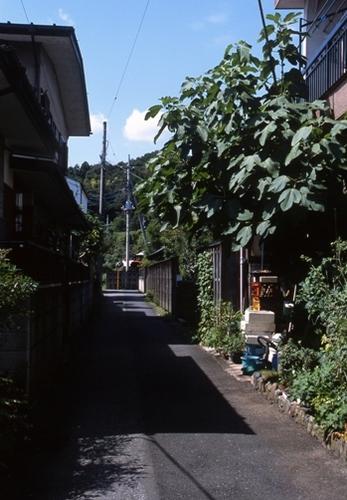 FWkarasuyamaRG080(1).jpg
