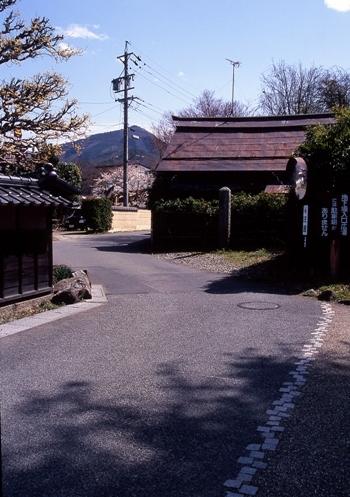 FWmatsushiroRG093(1).jpg