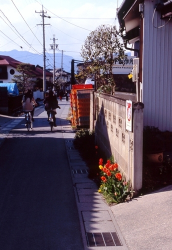 FWmatsushiroRG272(2).jpg