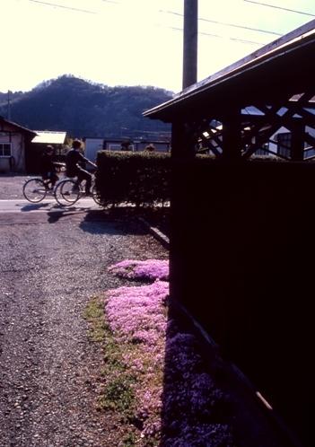 FWmatsushiroRG278(1).jpg