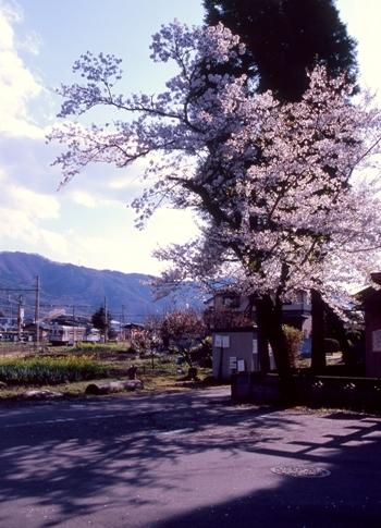 FWmatsushiroRG280(2).jpg