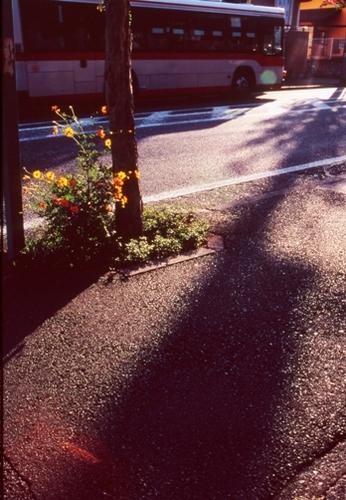 FWtokyu-denentoshiRG002(1).jpg