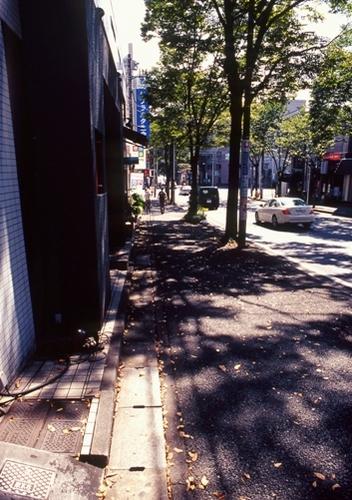 FWtokyu-denentoshiRG034(1).jpg