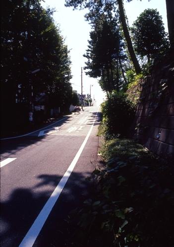 FWtokyu-denentoshiRG037(1).jpg