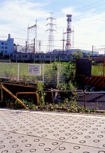 FWtokyu-denentoshiRG039(1).jpg