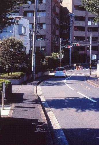 FWtokyu-denentoshiRG041(1).jpg